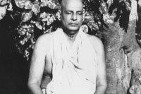 swami sivananda meditating