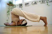 plough pose - Sivananda Yoga Toronto