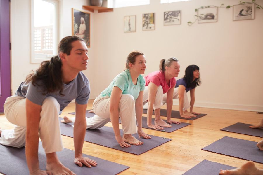 Beginner Yoga practitionners doing Sun Salutation