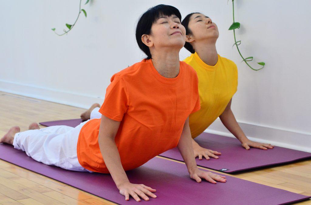 cobra_posture_hatha_yoga_toronto