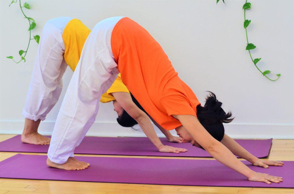 inverted-v-hatha-yoga-toronto